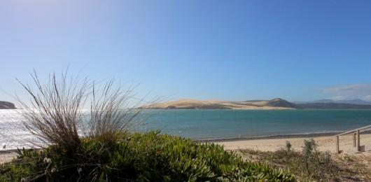 Omapere Dunes